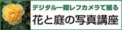 bannerfukuoka240x60